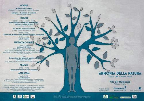 Armonia_pieghevole_1